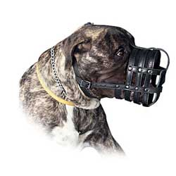 Unbeatable quality is what makes this muzzle special
