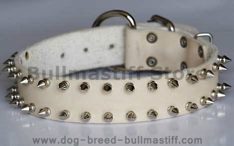 best leather spiked dog collar for big dogs